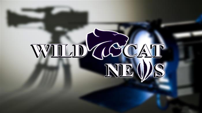 Wildcat News Logo