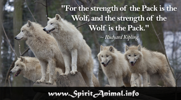 For the strength of the pack is the wolf, and the strength of the wolf is the pack...Rudyard Kipling