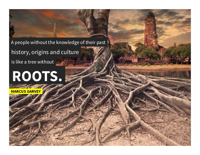 a people without knowledge of their past, origins and culture is like a tree without roots