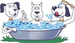 Dog wash dec 3