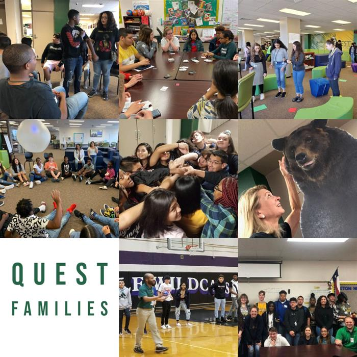 Quest Families in Action