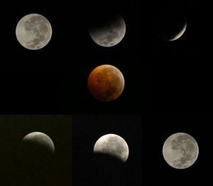 Photos of the sequence of the Eclipse.