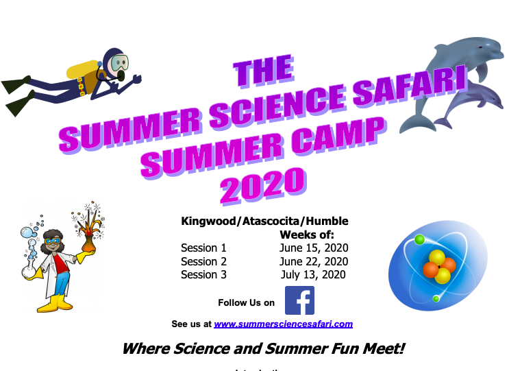 Summer Science Safari Camp 2020