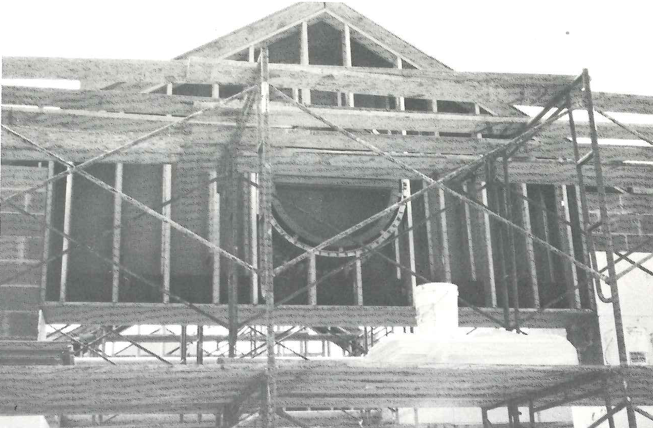 Pine Forest under construction