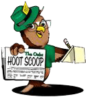 hoot scoop owl